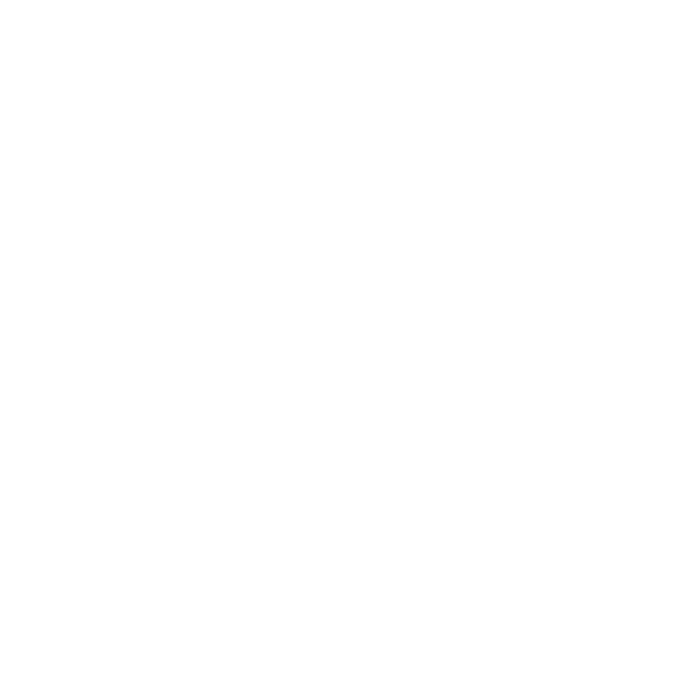 Wolters Schoenmakers